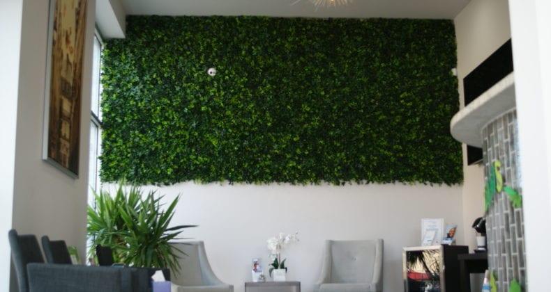 millennium-dental-dentist-ivy-wall